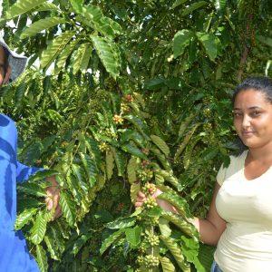 Crédito Fundiario generó vidas nuevas y prosperidad en el estado de Rondônia