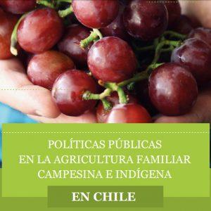 [CHILE] POLÍTICAS PÚBLICAS PARA LA AGRICULTURA FAMILIAR