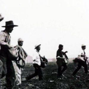 Día nacional del campesino, la tierra es para quien la trabaja