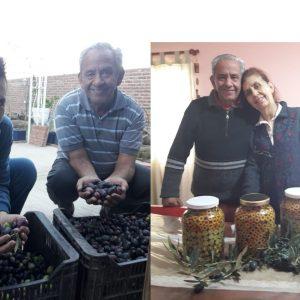 Olivicultores tradicionales en Aimogasta: un ejemplo de los beneficios del asociativismo, la organización y la cooperación entre agricultores familiares