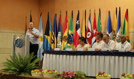 COPROFAM representa los agricultores y agricultoras del MERCOSUR en el lanzamiento del Decenio de la Agricultura Familiar en la America Latina y Caribe