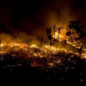 Quema, deforestación y destrucción: el desarrollo sostenible de la Amazonía debe ser repensado