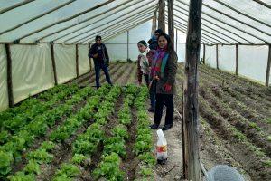 Intercambio de experiencias entre productores de Bolivia y Perú