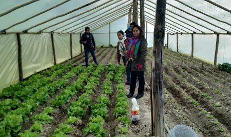 Intercambio de experiencias entre agricultores familiares de Perú y Bolivia