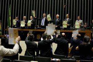 Lançamento da Década da Agricultura familiar no Brasil 4